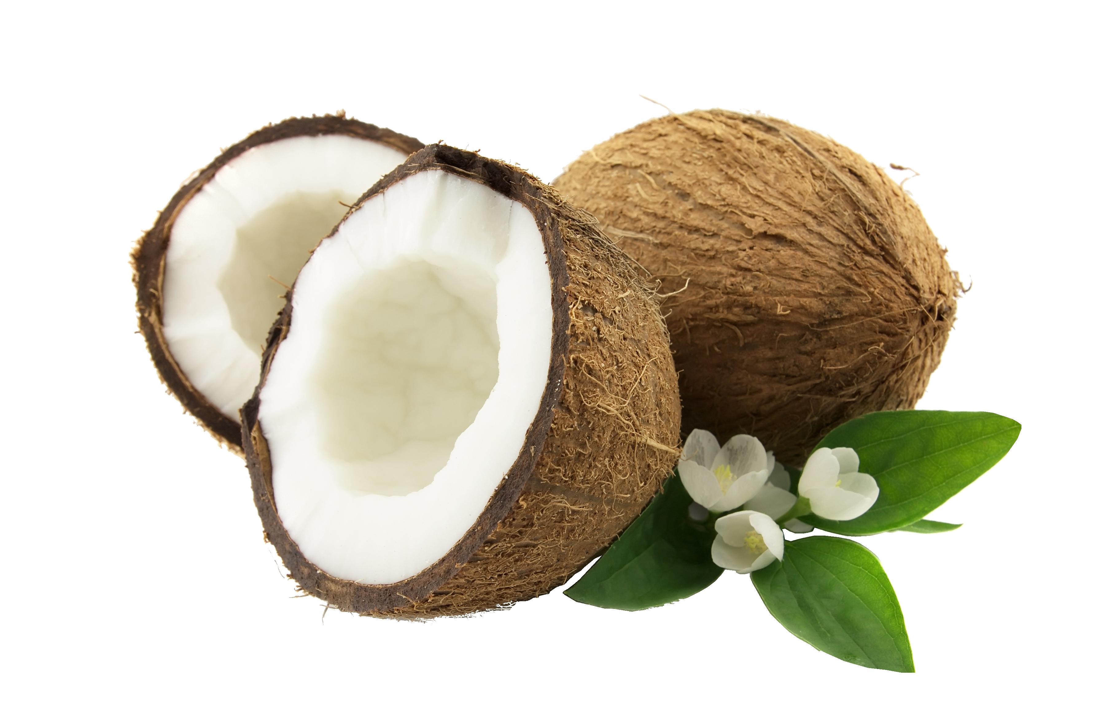 kokos-png
