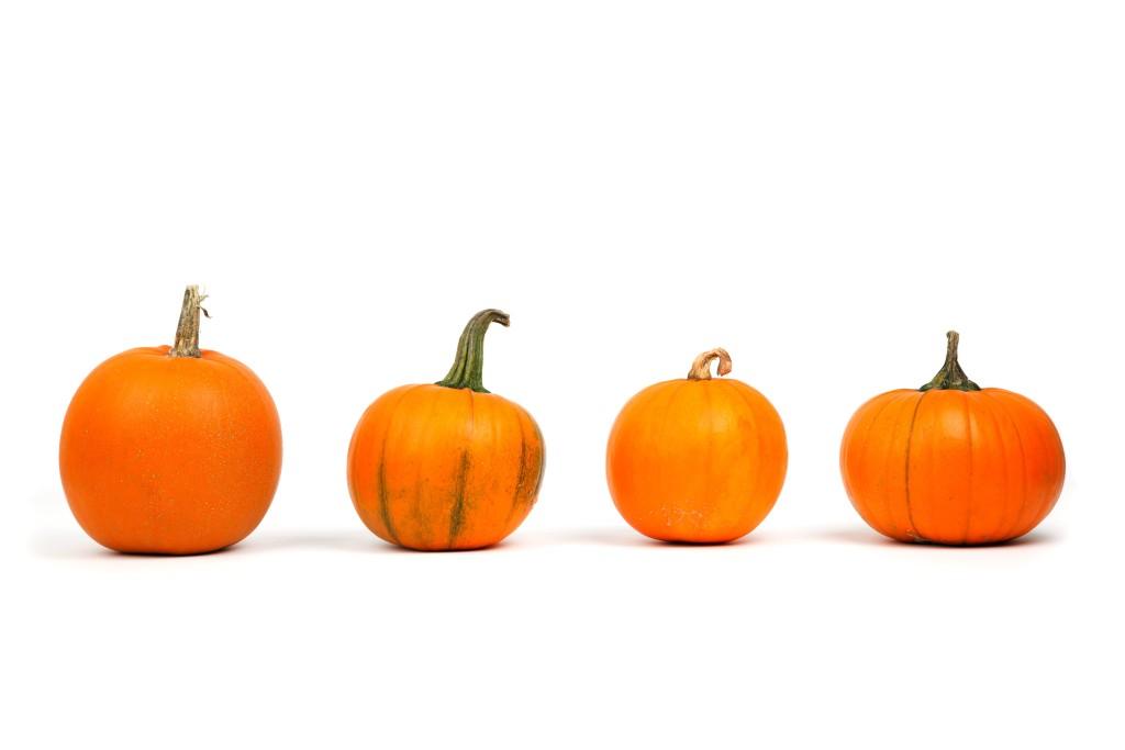 autumn-decoration-fall-food-41964